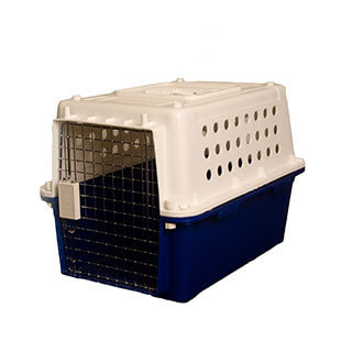 pet travel, crate, animal travel, canada