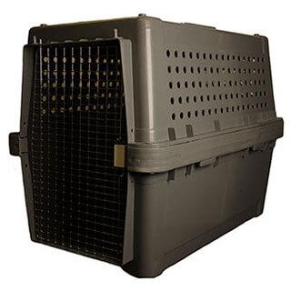 pet travel, crate, animal travel, canada
