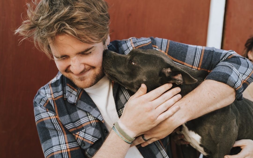 Three Things to Consider When Adopting a Pet